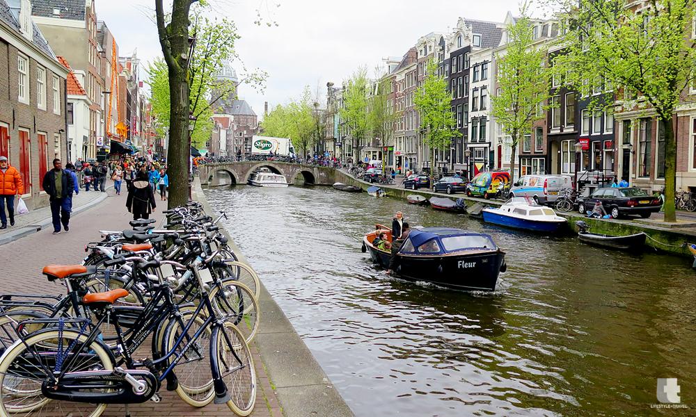 ۹ دلیل تحصیل در هلند