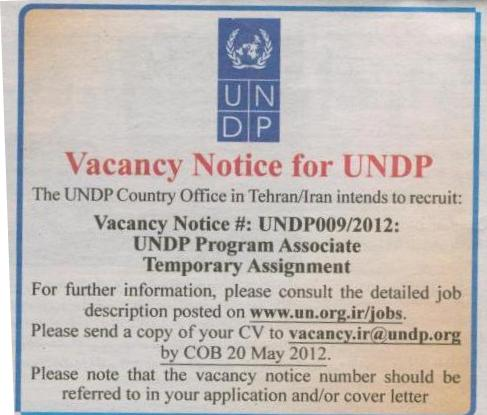 UNDPprogram associate temporary assignment