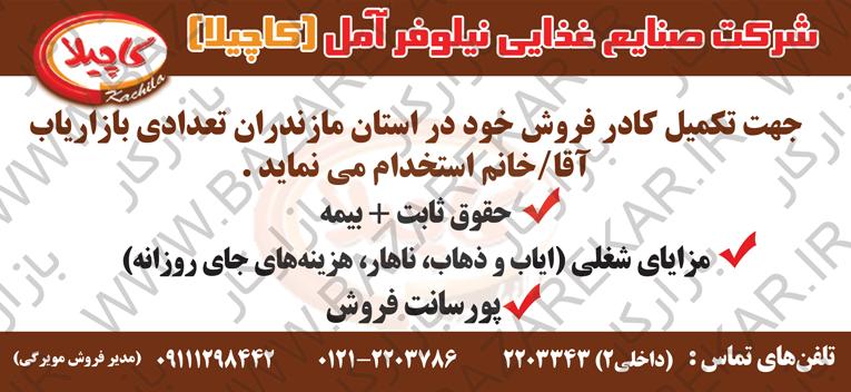 استخدام بازاریاب در صنایع غذایی در مازندران